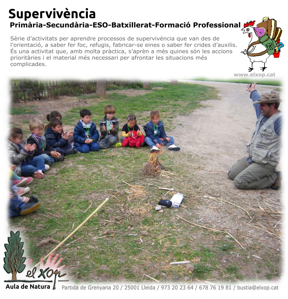 ACT_SUPERVIVENCIA (1)
